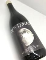 botella pico lunar19